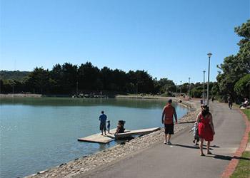 aotea-lagoon-boardwalk
